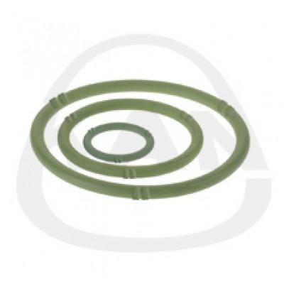 Прокладка KAN O-Ring LBP FPM Viton 22
