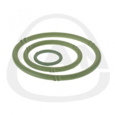 Прокладка KAN O-Ring LBP FPM Viton 54
